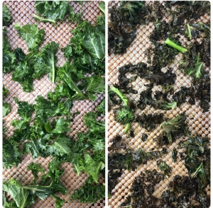 kale chips raw cooked