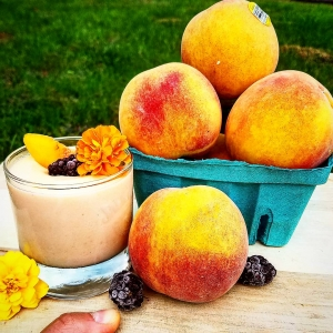peach smoothie greek yogurt dave sherotski