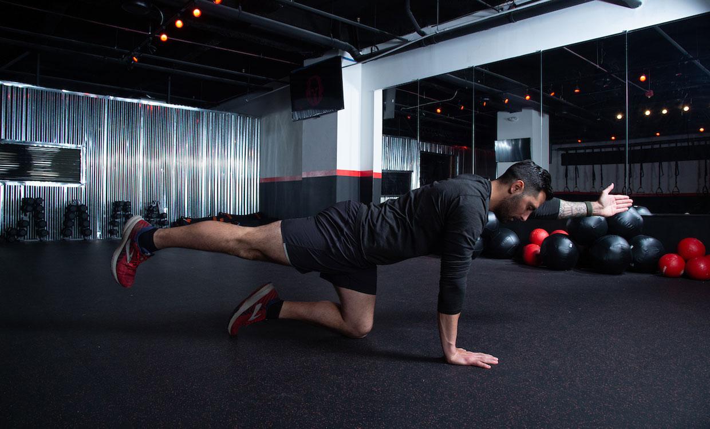 Birddog upper body and core workout