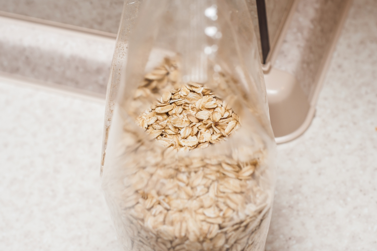 healthy snacks for traveling oatmeal