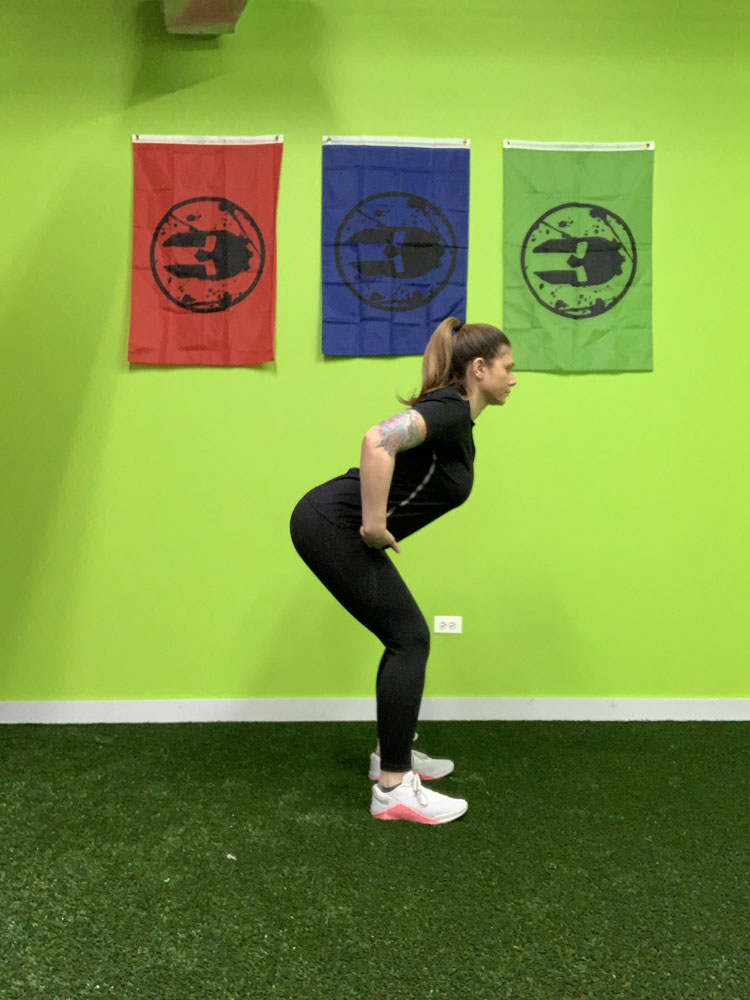 bodyweight squat hinge